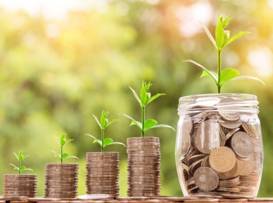 7 principa razumne ekonomske politike, prevod Slobodni ugao