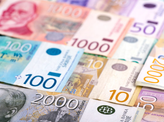 Novi budžet u znaku većih subvencija – ali i investicija