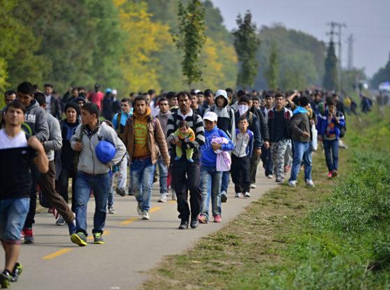 """Evropa neće postati """"islamski kalifat"""" – ali migracije jesu izazov za budućnost"""