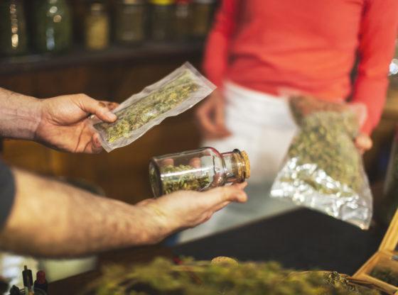 Sve što treba da znate o dekriminalizaciji marihuane