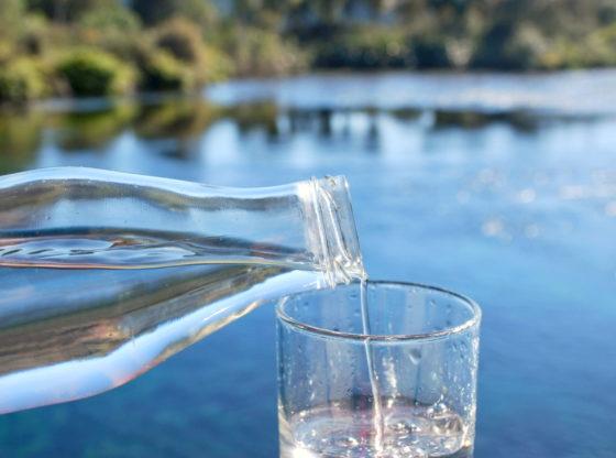 Strano vlasništvo nad izvorima za vodu – da li je problem?