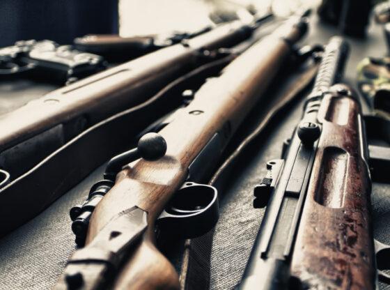 Odjeci Timočke bude – oružje slobode