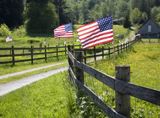 Loženje na politiku u Americi