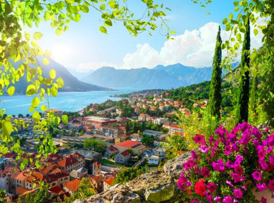 Budućnost crnogorskog ekonomskog tigra