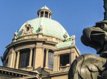 Manjine u parlamentu – istorija, problemi i rešenja