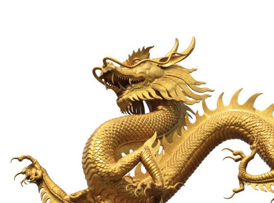 Zašto ignorišemo stanje ljudskih prava u Kini?