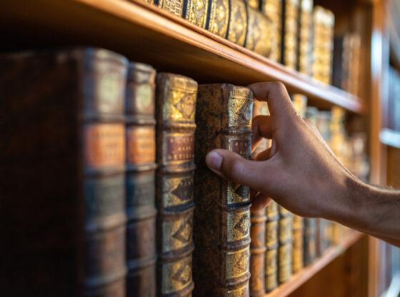 Staro Sajmište – izgradnja kulture sećanja na dobrom putu